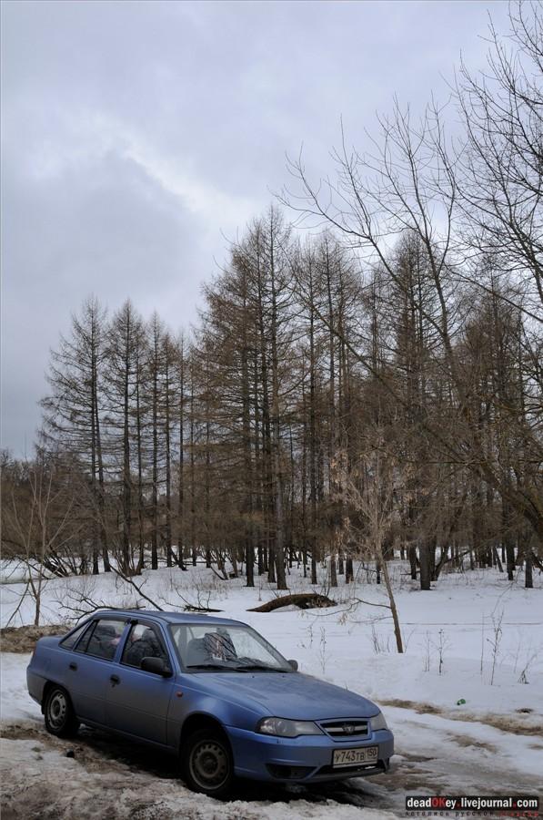 фотографии московской губернии