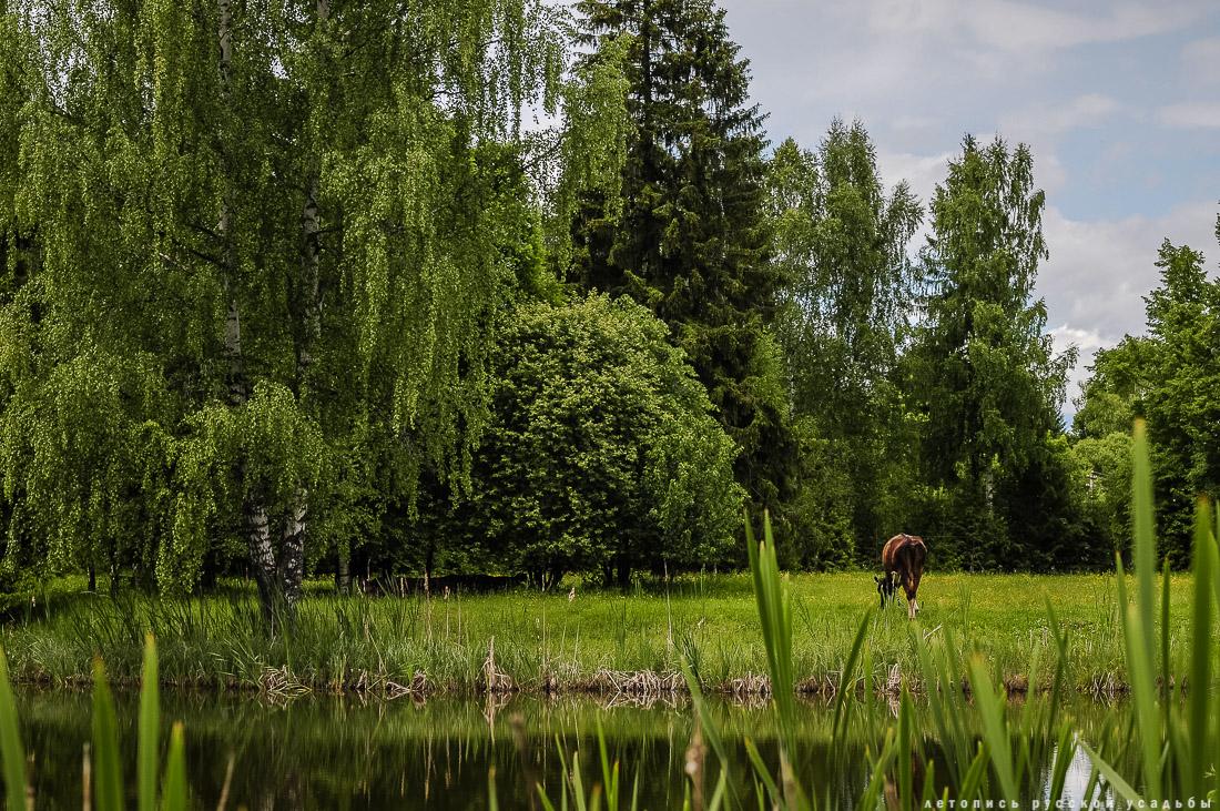 усадьба Артемьево, Ярославская область, Мышкинский район
