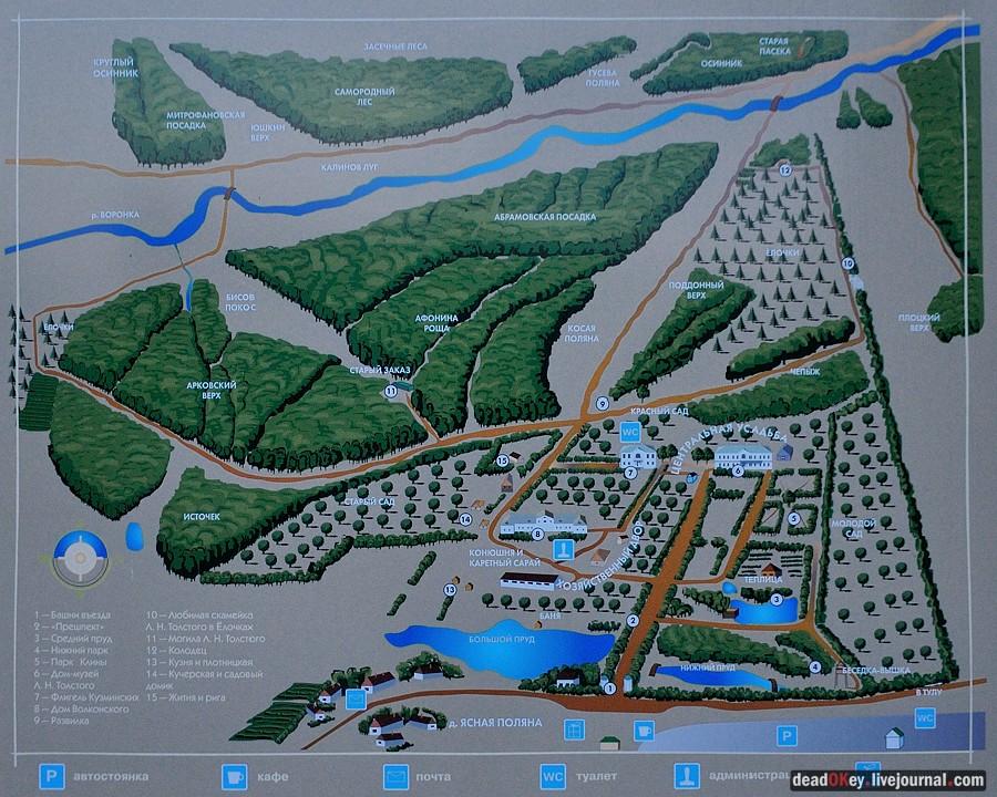 Схема усадьбы Ясная Поляна